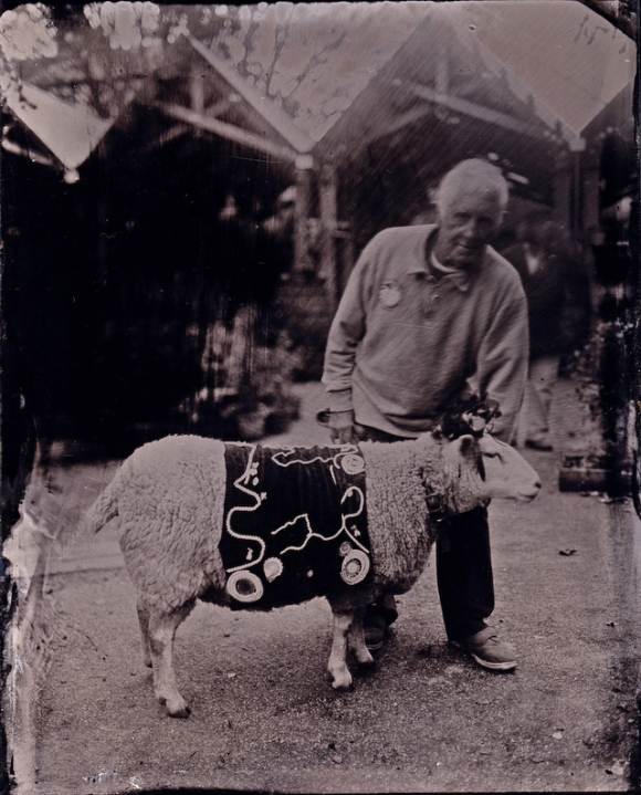 Amy the Sheep with handler Roger