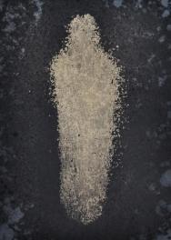 Douglas Nicolson Manifestations of Spirit Web (2 of 8)